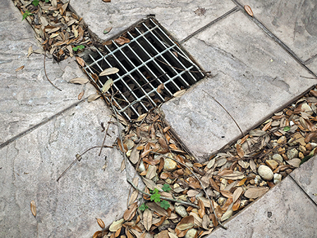Clogged French Drain